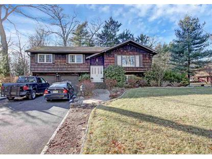 8 CROSS ST Closter, NJ MLS# 180002053