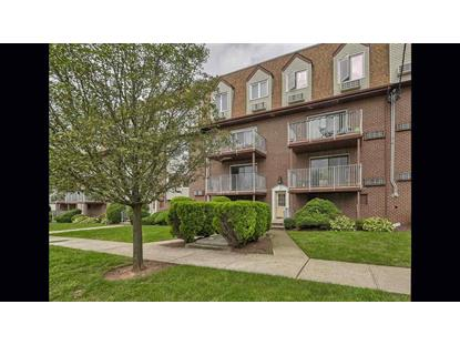 17 ZABRISKIE AVE, Unit 3A Bayonne, NJ MLS# 180017934