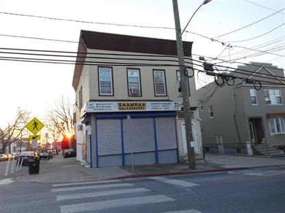 197 BARTHOLDI AVE Jersey City, NJ MLS# 190001064
