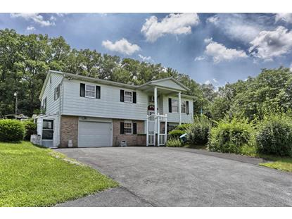 11 TERRACE HILL ROAD Pine Grove, PA MLS# 256888