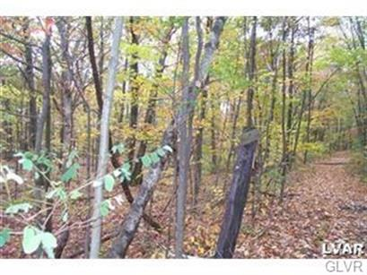 0 West Mountain Road, Bushkill Twp, PA 18091 - Image 1