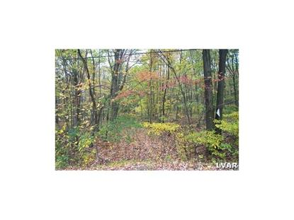 0 Old Grade Road Wind Gap, PA MLS# 533770