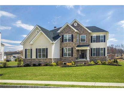 2120 Rainlilly Drive Center Valley, PA MLS# 544417