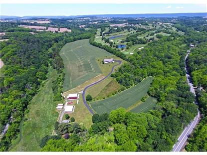 6595 Trickle Creek Road Moore Twp, PA MLS# 548047