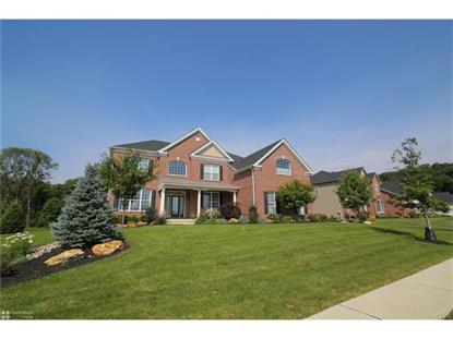 6150 Blue Belle Drive Center Valley, PA MLS# 552599