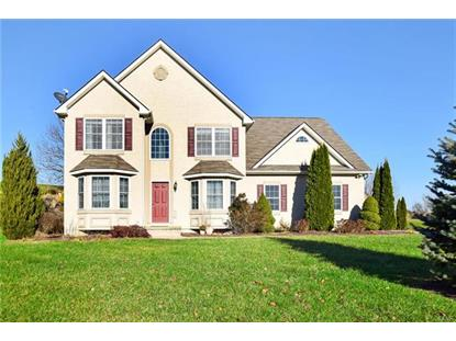 93 Appaloosa Court, Washington Township, PA