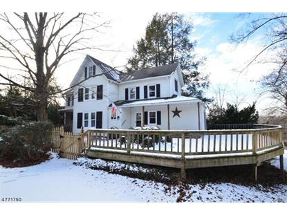113 Wertsville Road, Ringoes, NJ