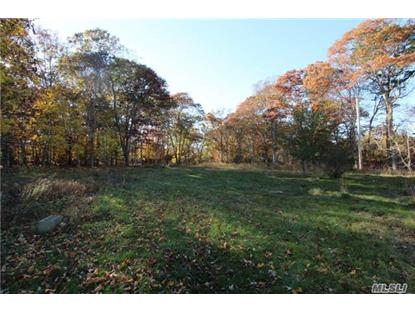 272 Bh/Sag Harbor Tpke Bridgehampton, NY MLS# 2975914