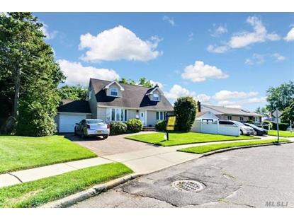 46 Morris Dr, East Meadow, NY