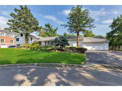27 Pine Dr, Great Neck, NY