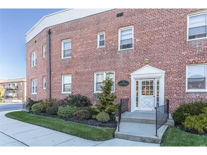 11 Park Pl Rockville Centre, NY MLS# 3076994