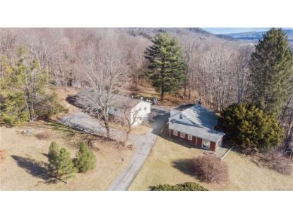 677 Butts Hollow Road Dover Plains, NY MLS# H6058776