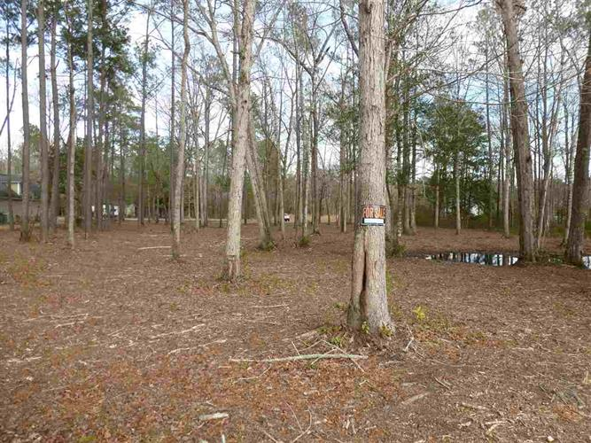 TBD Caines Landing Rd, Conway, SC 29526