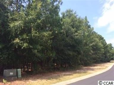 lot 63 PH 2 The Lot 63 The Reserve, Pawleys Island, SC 29585