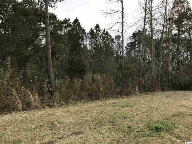 Lot 8 Church & Canal, Loris, SC 29569