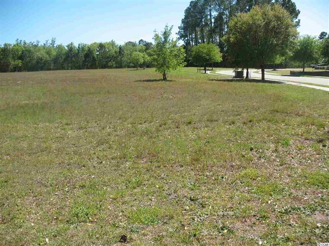 1408 Whooping Crane Drive, Conway, SC 29526