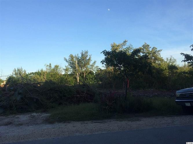 Lot 27 Low Country Loop, Murrells Inlet, SC 29576 - Image 1