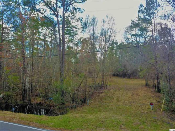 TBD Pitch Landing Road, Conway, SC 29526