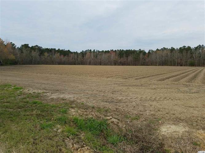 TBD HWY 9 & Old Stage Road, Nichols, SC 29581