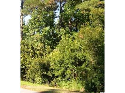 Lot 14 River Oaks Circle, Pawleys Island, SC
