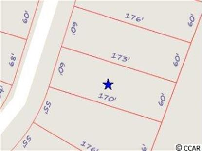 2068 SUMMER ROSE LN LOT 354, Myrtle Beach, SC