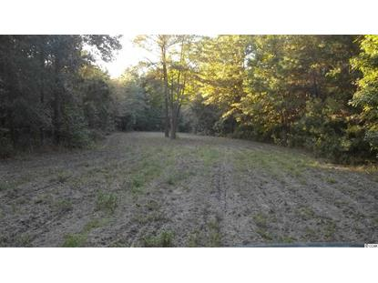 168 AC Carrie Road, Georgetown, SC