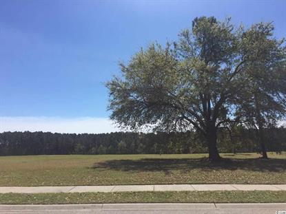 Lot 32 Avenue of the Palms, Myrtle Beach, SC