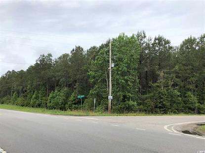 Parcel 4 22.41 acres+/- Route 701 & Pee Dee Hwy, Conway, SC