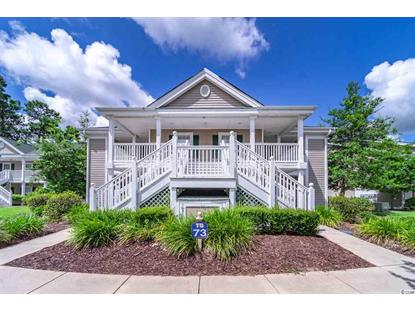 641 Blue Stem Dr.  Pawleys Island, SC MLS# 2014008