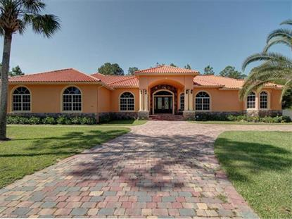 100 NE 10th AVE Naples, FL MLS# 217034922