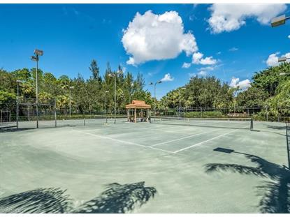 2462 Hidden Lake DR Naples, FL MLS# 218081631