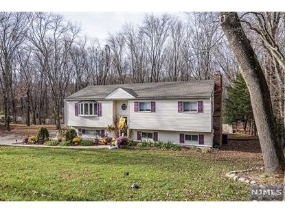 766 Old Mill Road Franklin Lakes, NJ MLS# 1847774