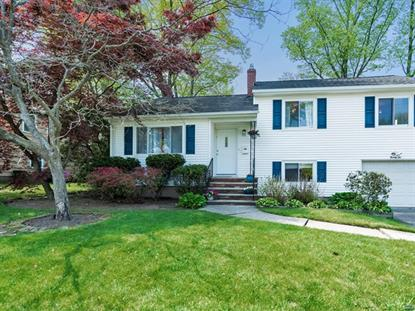 22 Valley Brook Drive Emerson, NJ MLS# 1900128