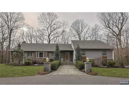 513 Pepperidge Tree Lane Kinnelon, NJ MLS# 1900465