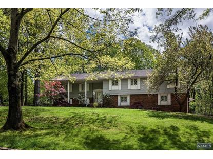 30 Sun Valley Road Ramsey, NJ MLS# 20002973