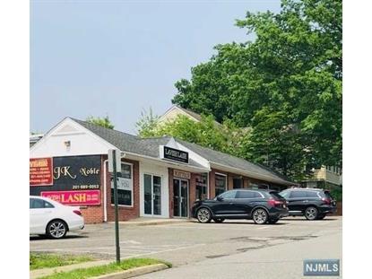 新泽西州Van Blarcom Avenue Midland Park 21号,MLS#20003598