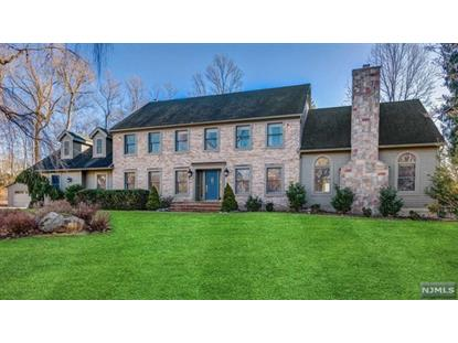 44 Sun Valley Road Ramsey, NJ MLS# 20004715