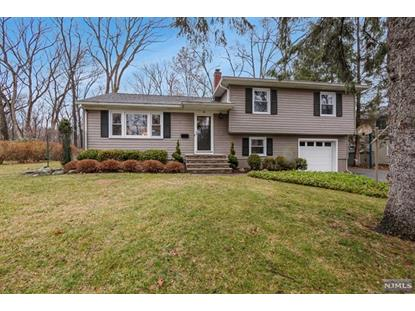 42 Dogwood Terrace Ramsey, NJ MLS# 20006164