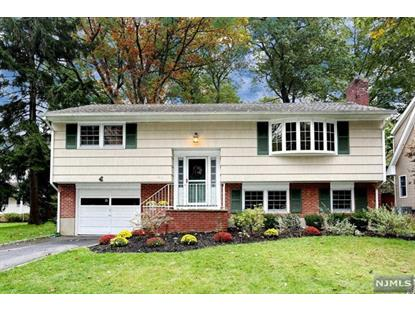 166 Grove Street Ramsey, NJ MLS# 20006277