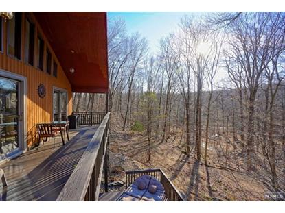 79 Mohican Road Blairstown, NJ MLS# 20009616