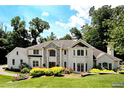 44 Birchwood Drive Woodcliff Lake, NJ MLS# 20019115