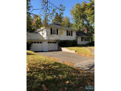 138 Bogerts Mill Road Harrington Park, NJ MLS# 20043872