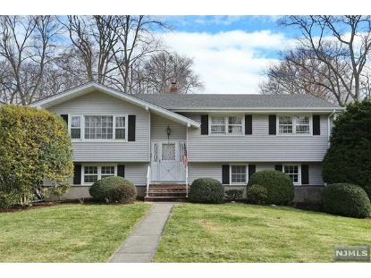 10 Meadow Lane Montvale, NJ MLS# 20049585