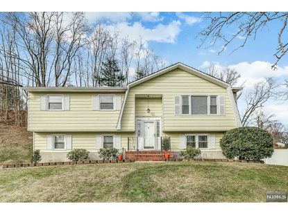 10 Lundy Terrace Butler, NJ MLS# 21000669