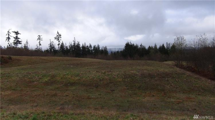 0 Pacific Dogwood Place, Freeland, WA 98241 - Image 1