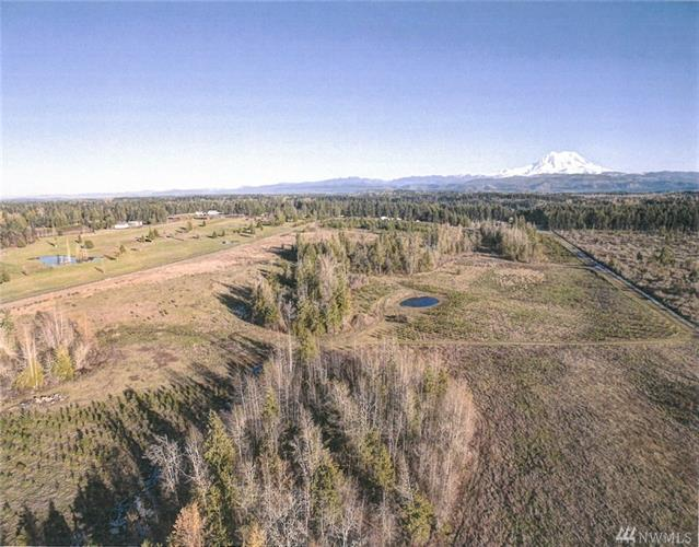 0 46th Ave E, Eatonville, WA 98328 - Image 1