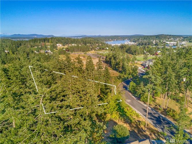 541 Kelsando Cir, Friday Harbor, WA 98250