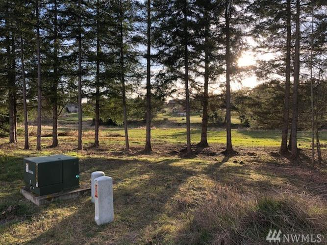 29410 33rd Ave S, Roy, WA 98580 - Image 1