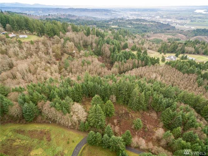114 Morrison Heights Rd, Woodland, WA 98674 - Image 1