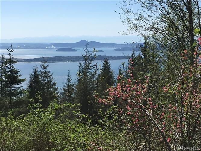 0 Chuckanut Ridge/Heavens Gate, Bow, WA 98232 - Image 1